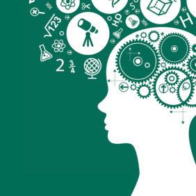 Rapida guida ai bias cognitivi